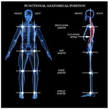 metaphysical remedy for knee pain