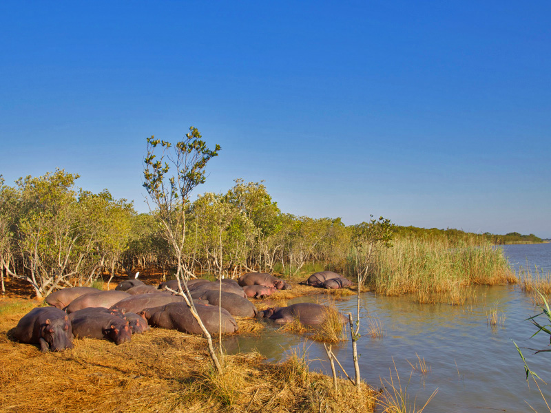 reserve thula thula