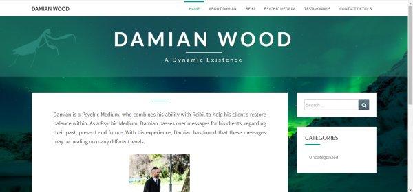 Damian wood Wellness